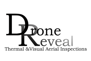 Drone Reveal